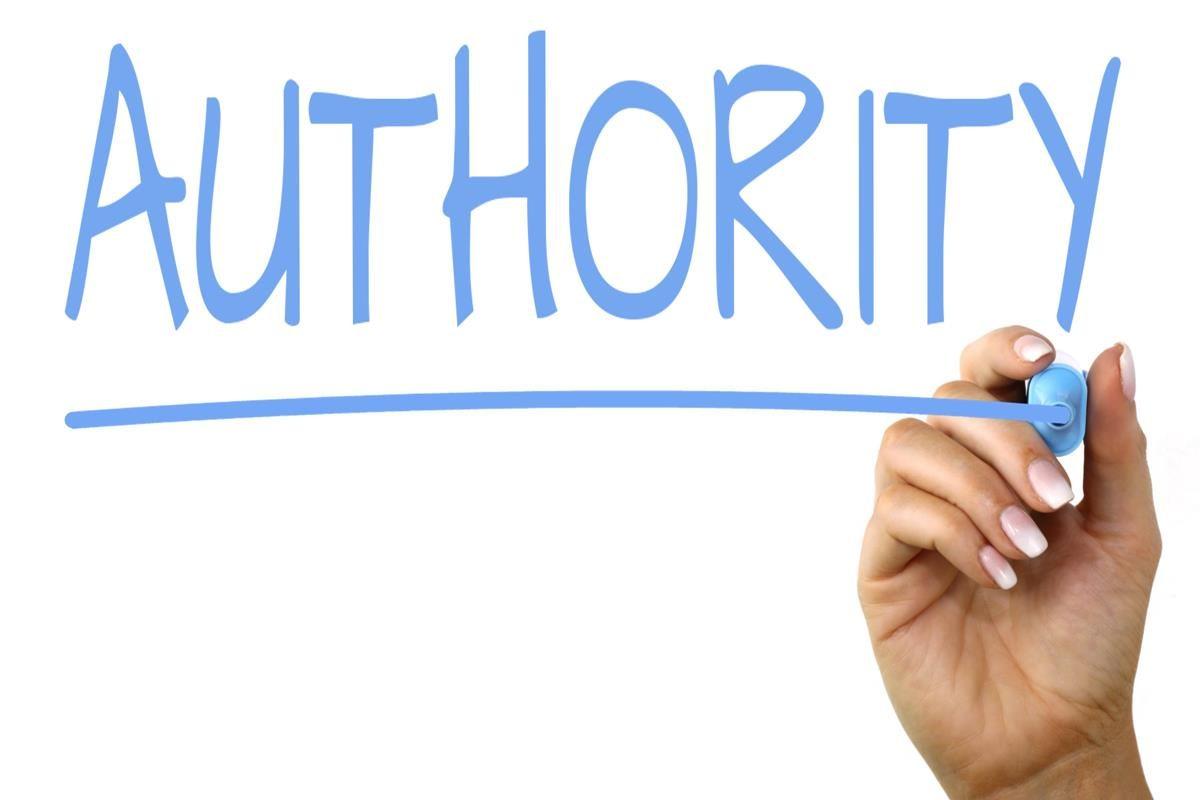 L'importanza dell'autorità in un sito e-commerce